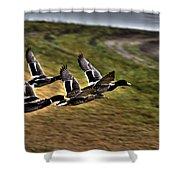 Ducks In Flight V5  Shower Curtain