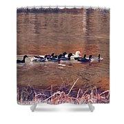 Ducks On Canvas Shower Curtain