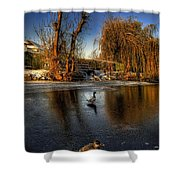 Ducks On Ice Shower Curtain