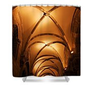 Duke's Palace Arched Ceiling Shower Curtain