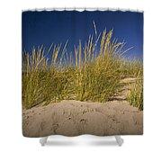 Dune And Beach Grass On Lake Michigan No.969 Shower Curtain