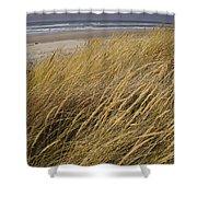 Dune Grass On The Oregon Coast Shower Curtain