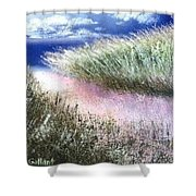 Dune Path Shower Curtain