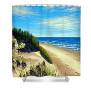 Dunes At Dalvay Shower Curtain