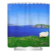 Dunmore Head, Blasket Islands, Dingle Shower Curtain