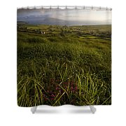 Dunquin, County Kerry, Ireland Rural Shower Curtain