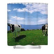 Durrus, Sheeps Head, Co Cork, Ireland Shower Curtain