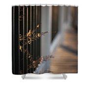 Dusk Grasses Shower Curtain