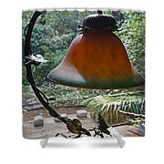 Dusty Old Lamp In Morning Light Shower Curtain