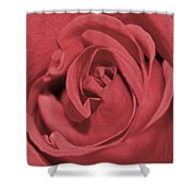 Dusty Rose Shower Curtain