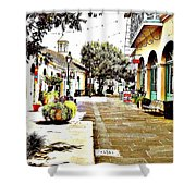 Dutch Alley  Shower Curtain