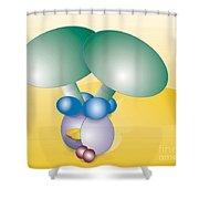 Dynein Complex Shower Curtain by Oak Ridge National Laboratory