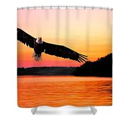 Eagle At Break Of Dawn Shower Curtain