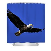 Eagle Fish In Mouth Shower Curtain