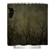 Eagle In The Mist  Shower Curtain
