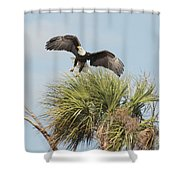 Eagle In The Palm Shower Curtain