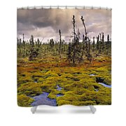 Eagle Plains, Yukon Territory, Canada Shower Curtain