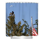 Eagle Rallies Round The Flagpole Shower Curtain