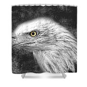 Eagle Two Shower Curtain
