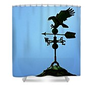 Eagle Weathervane Shower Curtain