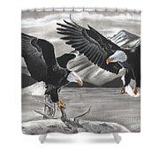 Eagles Shower Curtain