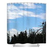Eagles Nest Lake Tahoe Shower Curtain