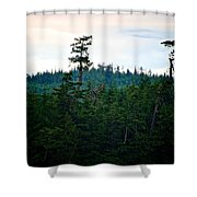 Eagle's Perch Shower Curtain