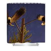 Eagles Suspended Shower Curtain