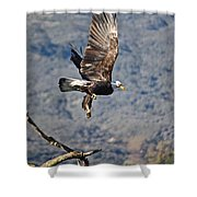 Eagle's Wings Shower Curtain