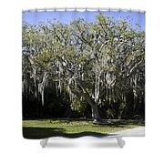Ear Tree Shower Curtain