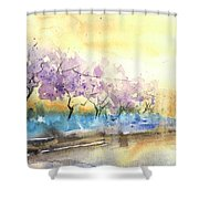 Early Morning 26 Shower Curtain