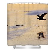 Early Morning Flight Shower Curtain