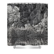 Early Morning Light Black And White Shower Curtain
