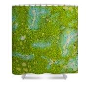 Easter Egg Green Macro 1 Shower Curtain
