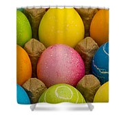 Easter Eggs Carton 2 A Shower Curtain