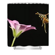 Eastern Yellow Jacket Wasp In Flight Shower Curtain