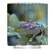 Eau De Vie Shower Curtain