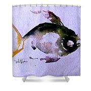 Echo Fish Fourteen Shower Curtain