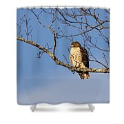 Edge Of The Field Shower Curtain
