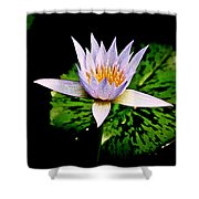 Egg Lily Shower Curtain