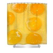 Eggs Yolk Shower Curtain
