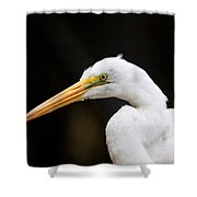 Egret - Old Whitey Shower Curtain