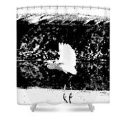 Egret In Flight V5 Shower Curtain