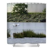 Egret Over Water Shower Curtain