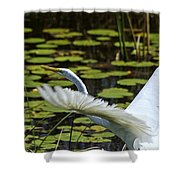 Egret Take Off Shower Curtain
