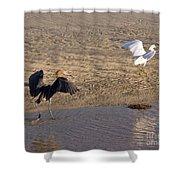 Egret Territory Shower Curtain