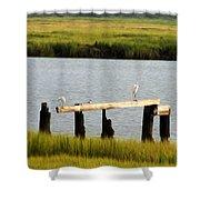Egrets In The Salt Marsh Shower Curtain