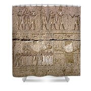 Egypt: Karnak Ruins Shower Curtain