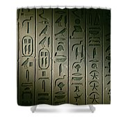 Egyptian Hieroglyphics Decorate Shower Curtain