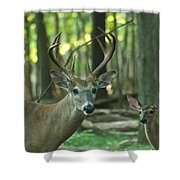 Eight Point And Fawn_9532_4367 Shower Curtain